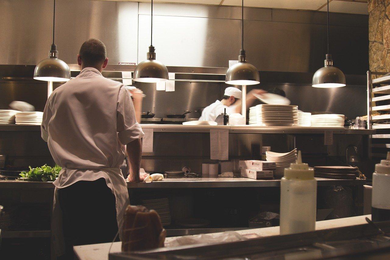 הדברה במסעדה ובבתי קפה – מה חשוב לדעת עליה?
